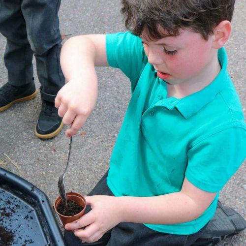 Gallery - children planting seeds